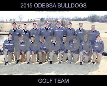 IMG_7664 OHS Golf Team 16x20 copy