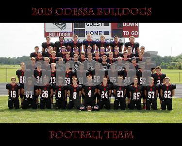 IMG_7068 OHS Football Team 16x20 copy