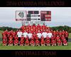 IMG_4404 OHS Football Team 16x20 copy