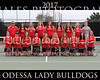 IMG_8281 OHS Girls Tennis Team 16x20 copy
