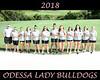 IMG_5994 OHS Girls Golf Team 16x20 copy