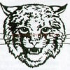 Northeastern Bobcats vs Delone Catholic Squires