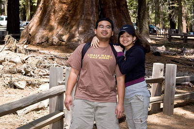 Yosemite National Park: May 2008