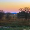 Wise Co. Sunrise 03-11-08