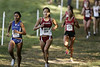 2008 NCAA Cross Country : 2 galleries with 255 photos