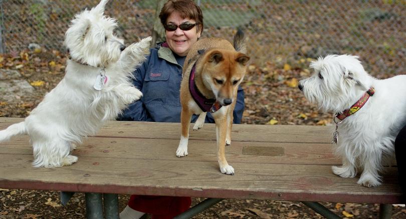 Isabella, Foxi, Sambucca_00002