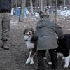 Baxter, Oliver & baxter boy