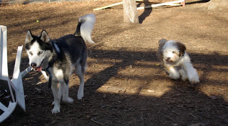 Max & Oliver