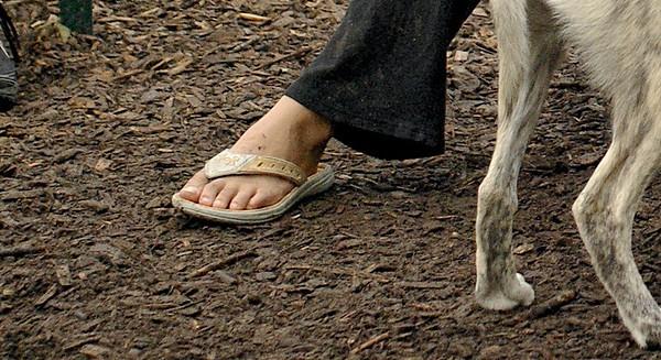 footwear mystery