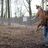 BUBBA (boxer (pup) leap
