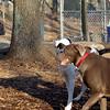 LEXXI (returns) , Sampson, Maggie.jpg
