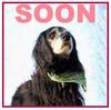 10 March (soon) sarah