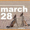 march 28 jackals cover