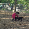 ARIEL & faith (terrier)