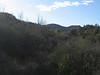 Las Virgenes View trail