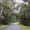 Our view on the road. Huge old oak trees framing the country roads with drapes of swaying Spanish moss- aaah what a view