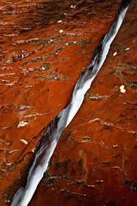 Kayenta Crack, Left Fork of the Virgin River, Zion, UT
