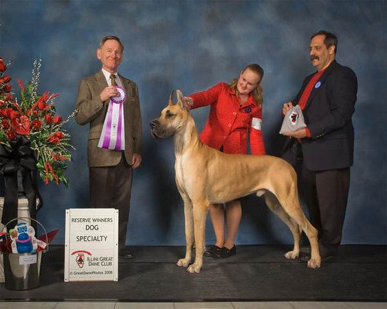 Saturday Reserve Winners Dog