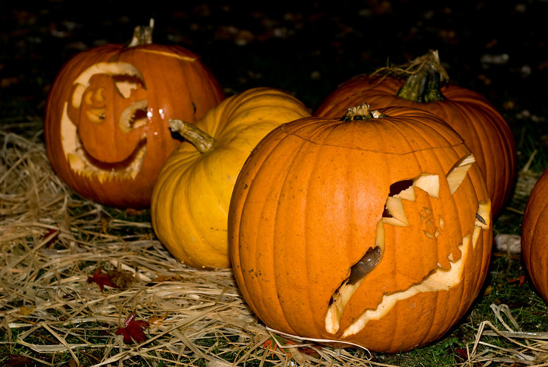 Gotta love the slugs crawling all over the pumpkins, for extra Halloween flair...