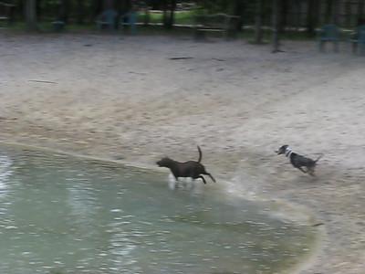 Tival Makes A Splash