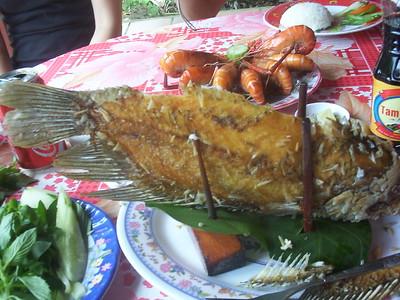 2008 Vietnam Trip