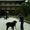 "Todai-ji deer in front of the Nandaimon, the Great Southern Gate.<br /> <br /> Todai-ji is cool because its Great Hall has survived all the strife and--though a shadow of its former self--is still the largest wooden building in the world. Check out the link below. Can you imagine how this must've looked to a society of peasants who'd never seen a skyscraper...?<br /> <br /> <br /> <a href=""http://www.taleofgenji.org/todaiji.html"">http://www.taleofgenji.org/todaiji.html</a>"