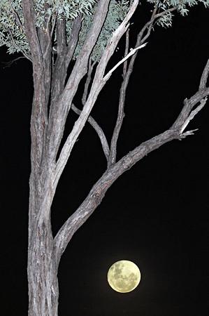 04_Porcupine Gorge