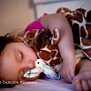 slapen met giraffe