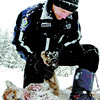 Citizen photo by Brent Braaten Conservation Officer Gary Van Spengen checks the paw on a cougar that he shot by McGuire Road Thursday afternoon. Earlier in the day the cougar attacked and killed a black lab that got between the cat and Wayne Krasnesky. Krasnesky credits the dog with saving him from being attacked by the cougar.
