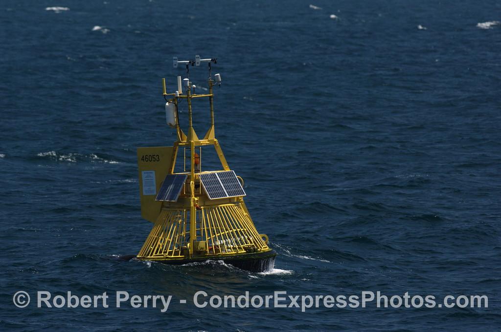 NOAA buoy 46053 west channel 2008 06-29 SB Channel - 311