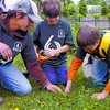 Citizen photo by David Mah Celtic Reforestation treeplanter Matthew Pelletier, left, from Edmonston, New Brunswick teaches Highglen Elementary students Daniel Noel and Tanner Williams, both 11, planting technique at the planting ceremony for the sixth billionth seedling planted in BC.