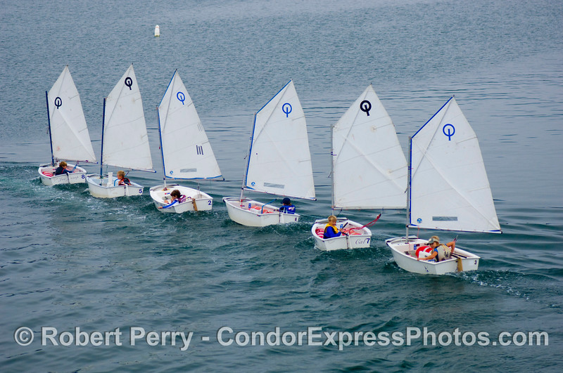 vessels SIX small sailboats in a line 2008 08-18 SB Harbor - 215mod