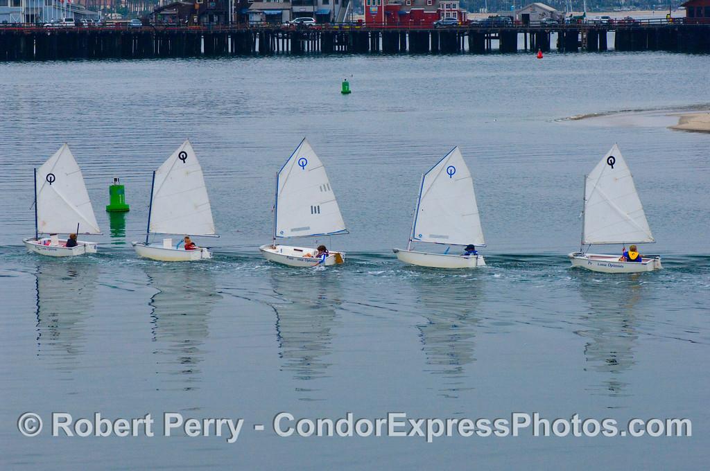 vessels FIVE small sailboats in a line 2008 08-18 SB Harbor - 205mod