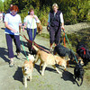 Citizen photo by David Mah Judy Sosiak, left, Lana Watson, Sandra Hansen, their 6 dogs, and over 200 other walkers and dogs walked the trails at Forest For The World at the Paws For A Cause fundraiser Sunday.