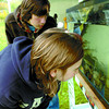 Citizen photo by David Mah Liza Switzman, 12, front, and her brother Ben, 14, looked at a variety of fish in the Fisheries and Oceans Canada booth.