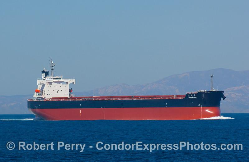 vessel buk carrier Tenshen Maru 2008 10-14 SB Channel - 013modCROProt