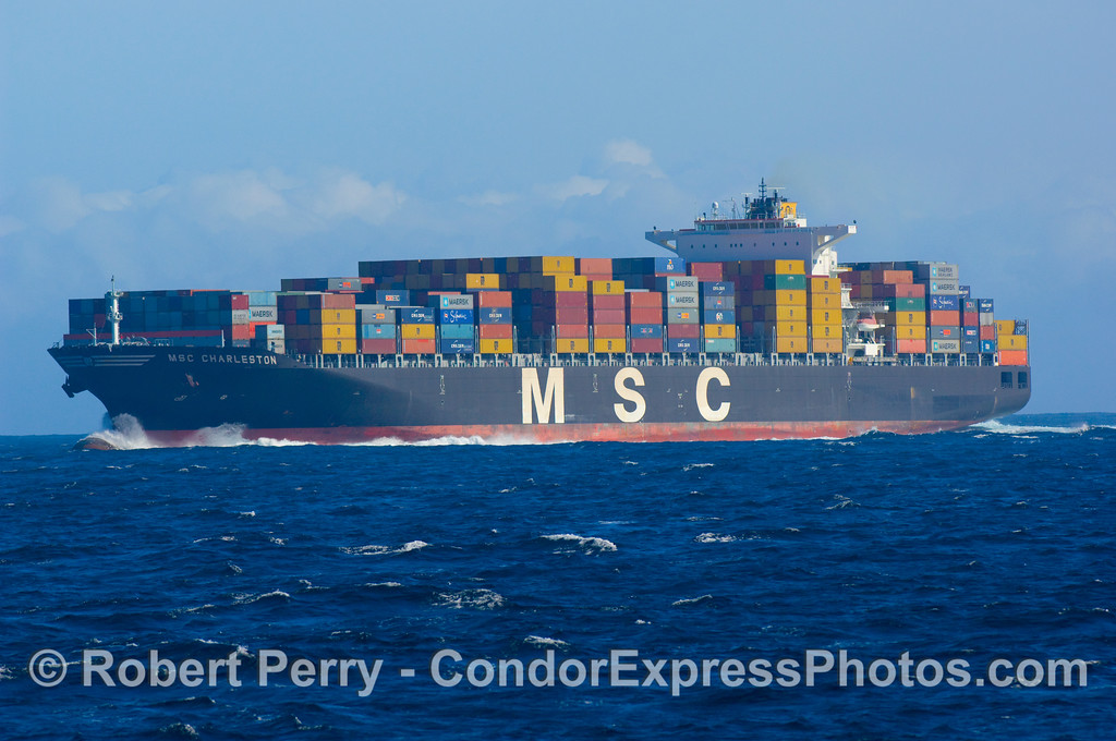vessel containter ship msc Charleston 2008 11-02 SB Channel - 068mod