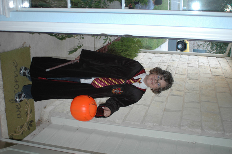Trick-or-Treat, Harry Potter!