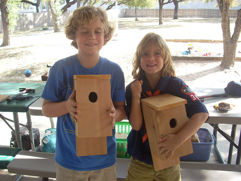 Showing off the birdhouses