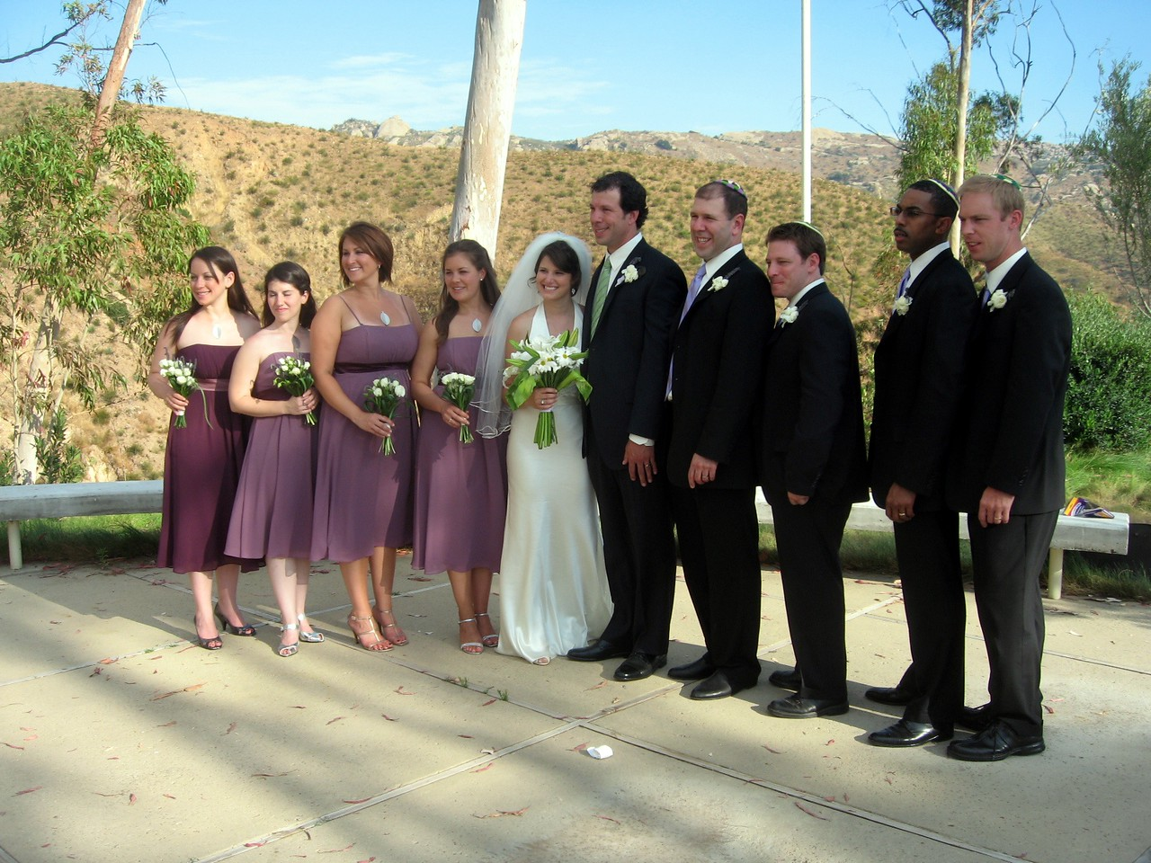 Abby and Avram with bridesmaids Rebecca (l), Vicki, Courtney, and Sarah; and groomsmen David, Jann, LaSalle, and Mark