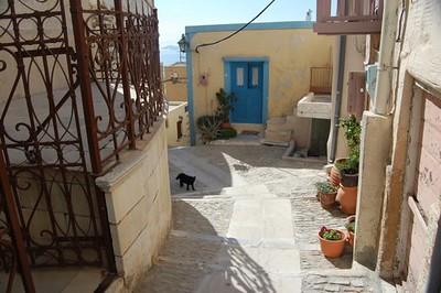 Doorways and cat - Marguerite Vera