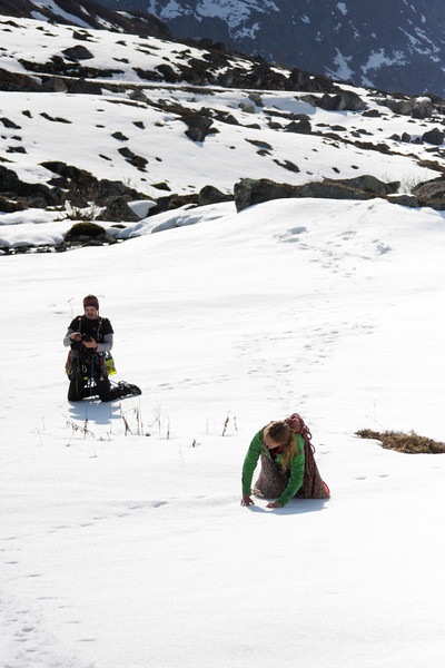 A hard crust of snow over a soft foundation makes travel difficult without skis, so we compromised, crawling the distance to the base of the climb.