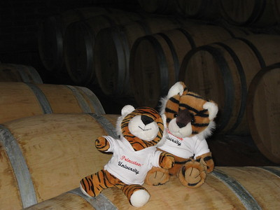 Pedro & Patricio having to much at the winery - Kimberly Collins