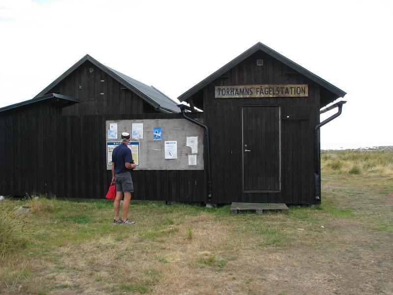 Kjelle vid Torhamns Uddes fågelstation