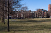 Beacon street townhouses from the Common.