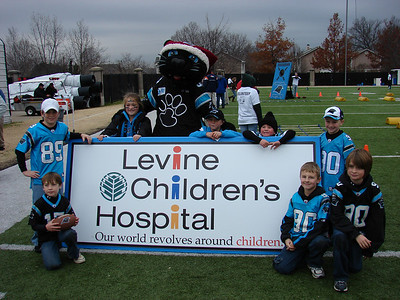 Sir Purr and Pantherfanz (Junior Division)