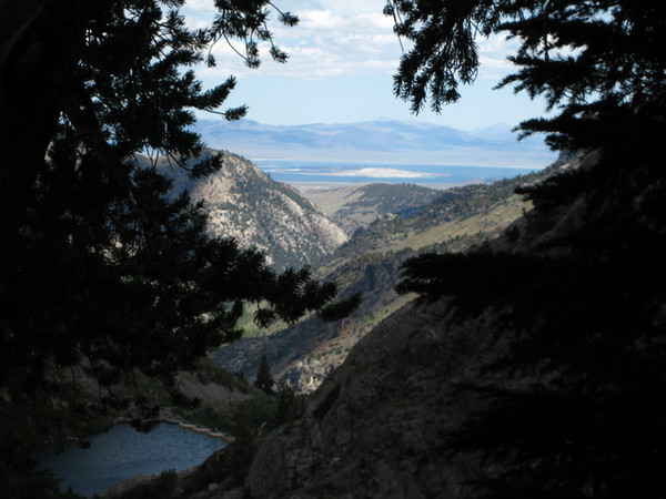 Down to Mono lake