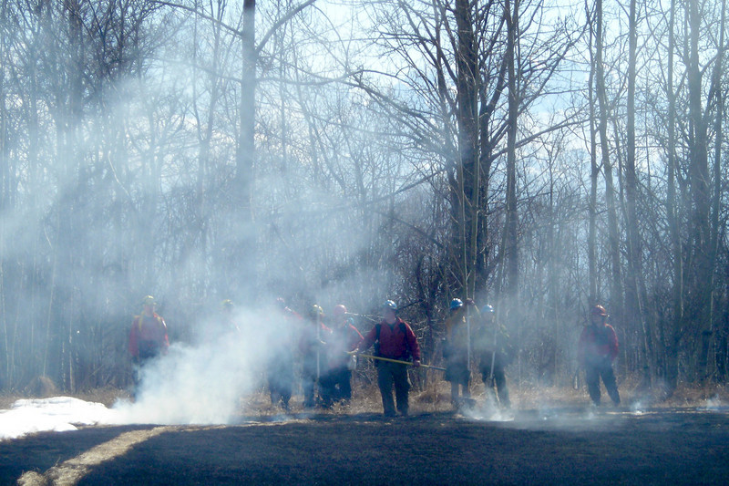 Firefighters stand by to prevent flames from moving into the woods.