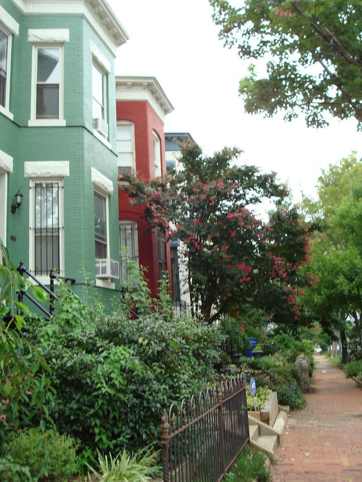 The street I live on. It's a really cute neighborhood.