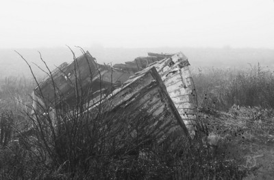 Day 244 (1/2) - Lost In Time  An old dory slowly withers away in the thick fog in West Lawrencetown.  I can imagine the tons of cod it hauled in its day.    Since the cod stocks were nearly depleted by commercial trawlers, the small local fishermen had to abide by a 10-year moratorium on cod.  This really hurt the Maritimes as many families had to pursue other means of employment or move away and leave everything behind.  Governments can be cruel, allowing the commercial fisheries to continue fishing (unofficially looking the other way), meanwhile, the small guy thinks everyone is playing fair only to get shafted once again.  The cod stocks were suppose to replenish, but now every one fears they may be lost forever due to some greedy politicians.  Nov 09 2008